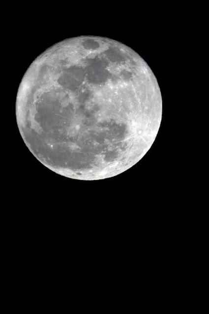La luna gorda, gorda
