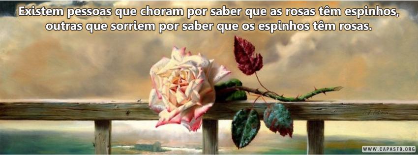 01688 Frase De Reflexão Capas Para Facebook Capas Para Facebook
