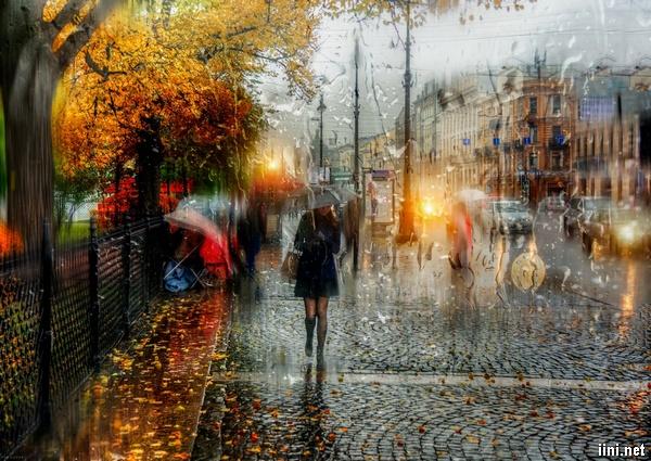 ảnh mưa mùa thu buồn