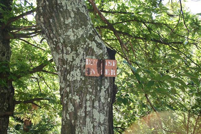 Les châtaignes dans les arbres ou au sol appartiennent au propriétaire du terrain