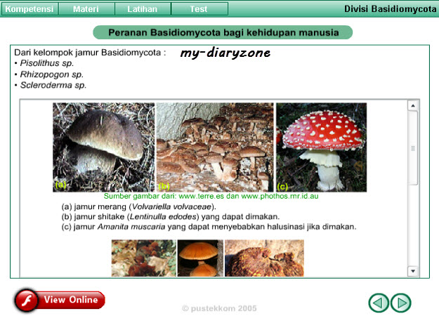 free online: swf biologi, animasi biologi, animasi jamur, animasi basidiomicota, basidiomycota, flash biologi, media belajar biologi, bahan ajar biologi, seri pendidikan dari pustekkom