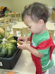 LePort Montessori Preschool Toddler Program Huntington Pier