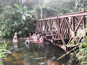 Okomu river