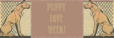 Puppy Love Week Sweet Mystery Of Love Image
