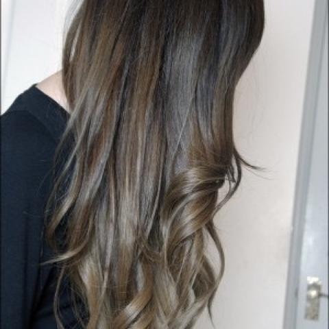 wat doet zilvershampoo met bruin haar