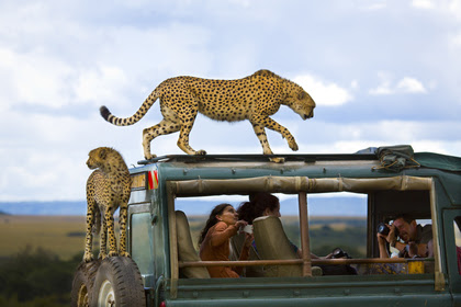 Say Cheese. Third place winner of National Geographic Traveler Photo Contest 2013.