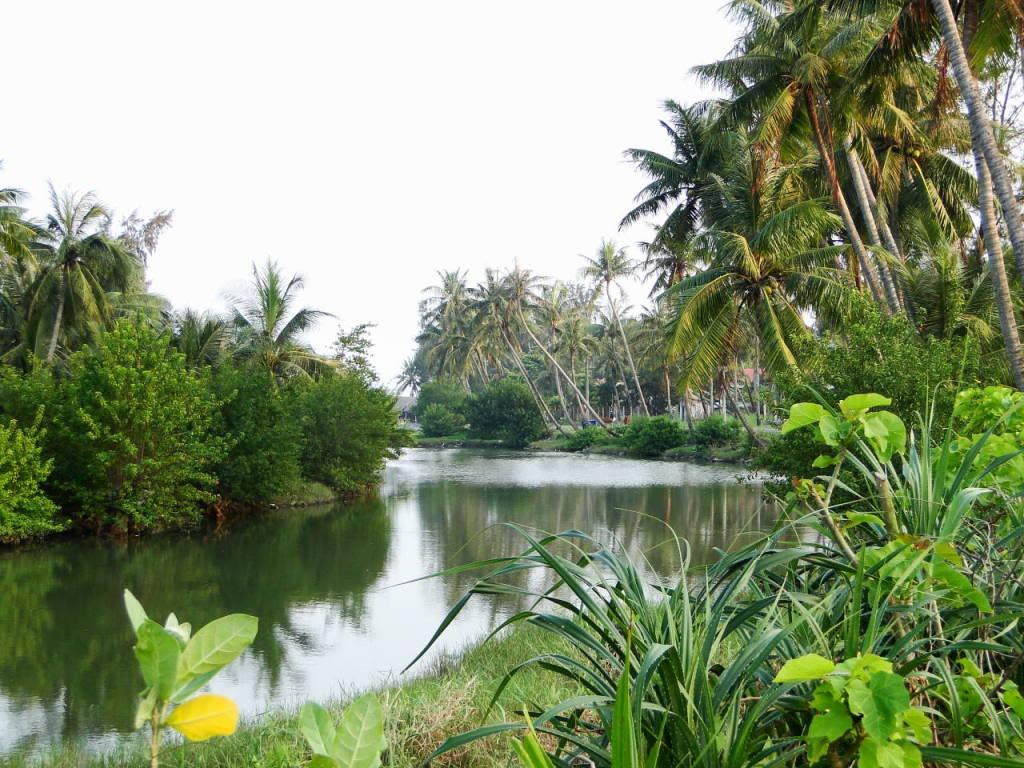 Những bài thơ viết về quê hương miền Tây sông nước