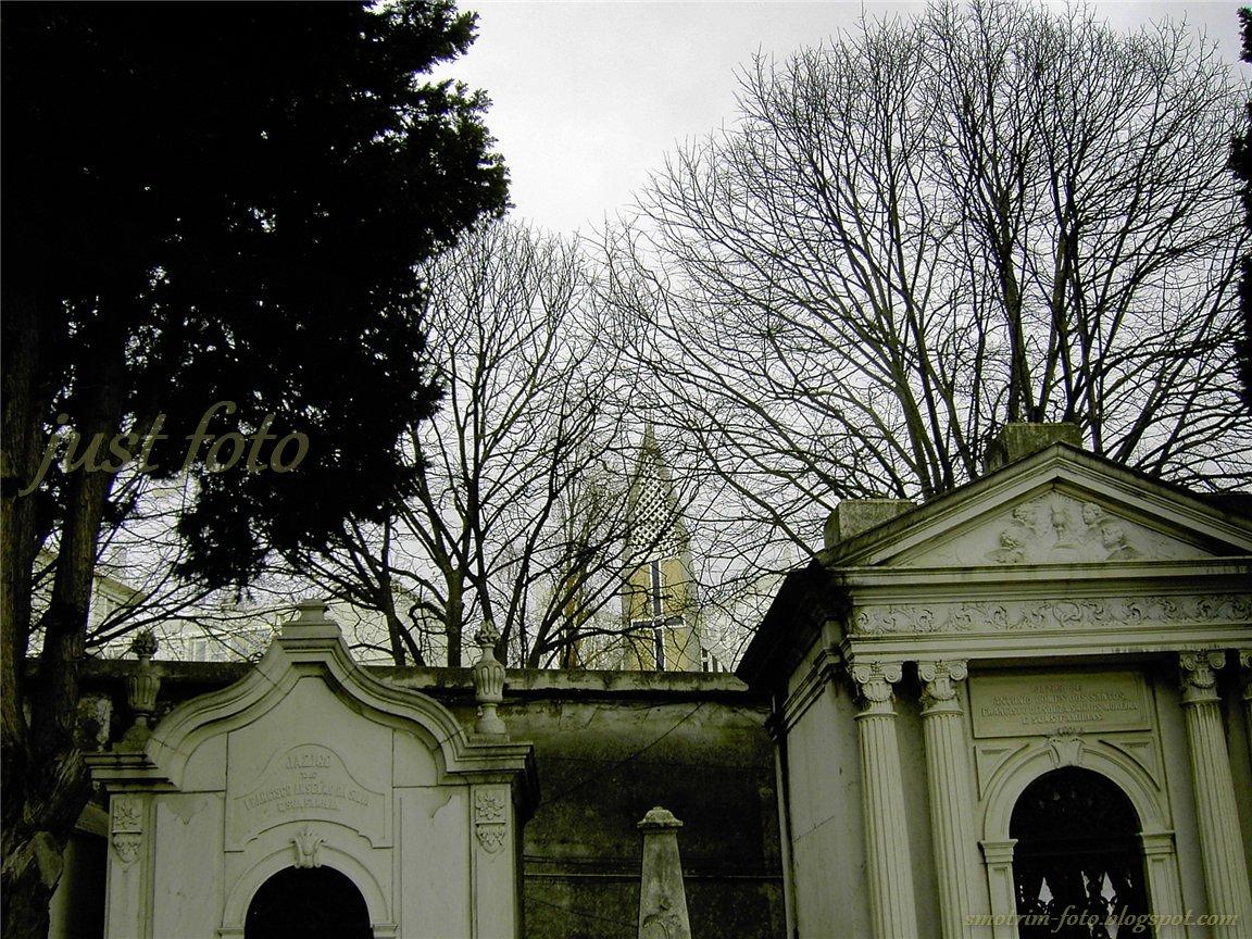 Историческое кладбище Празереш в Лиссабоне фото