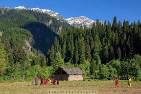 Ladies of Taobat on fields, taobat Village Neelam Valley Pakistan...