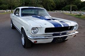 Mustang do �lubu Olsztyn