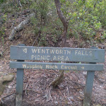 This trail is well signposted (7853)