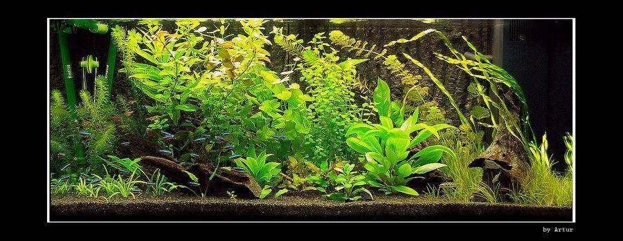 Resin volcano fish tank ornament ebay for Aquarium volcano decoration