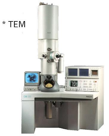 Bagian-Bagian Mikroskop Cahaya Dan Fungsinya Terlengkap