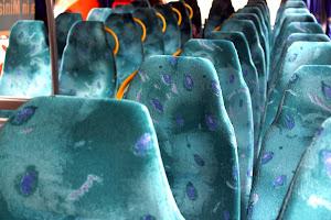 Bus to San Marino
