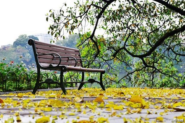 Hà Nội mùa lá rơi