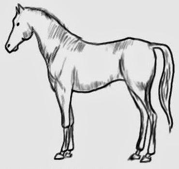 Уроки рисования. Рисуем лошадь