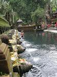 Ubud: temple de Tirta Empul
