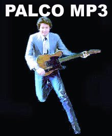 Palco_MP3_Nelio_Guerson_Orkut.jpg