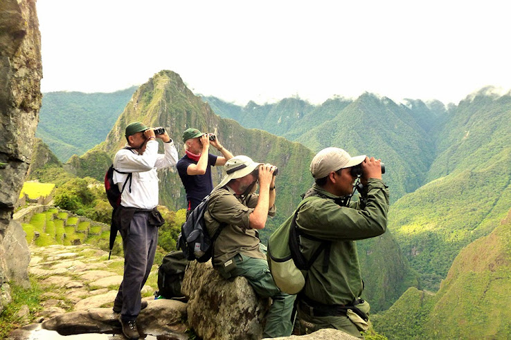 World Birding Rally Challenge Southeast Peru