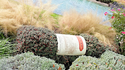 Cute shrubbery dressed up as a Kunde Family Estate wine bottle