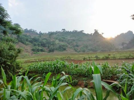 moc chau pys travel002 Trải nghiệm cuộc sống người Thái ở Mộc Châu