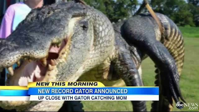 Mutant alligators in Mississippi?