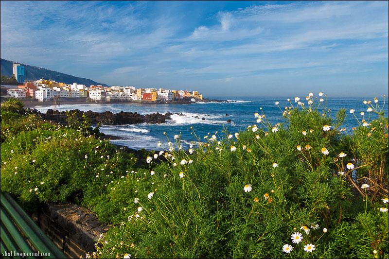http://lh4.googleusercontent.com/-BmvvqxGvE6U/UN9lIkUKaNI/AAAAAAAAEJU/x3j2fb02q9Y/s800/20121221-115955_Tenerife_Puerto_de_la_Cruz.jpg
