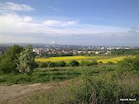 Plzeň ze Sylvánu