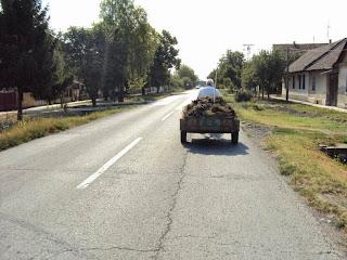 Mistwagen mit RasenmäherantrieMistwagen mit Rasenmäherantrieb