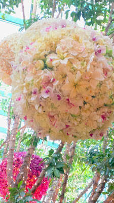 Gorgeous flowers inside the Conservatory Area, cultivated botanical gardens in the atrium of The Wynn