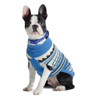 Luxury Dog Jumpers Stylish Dog Sweaters