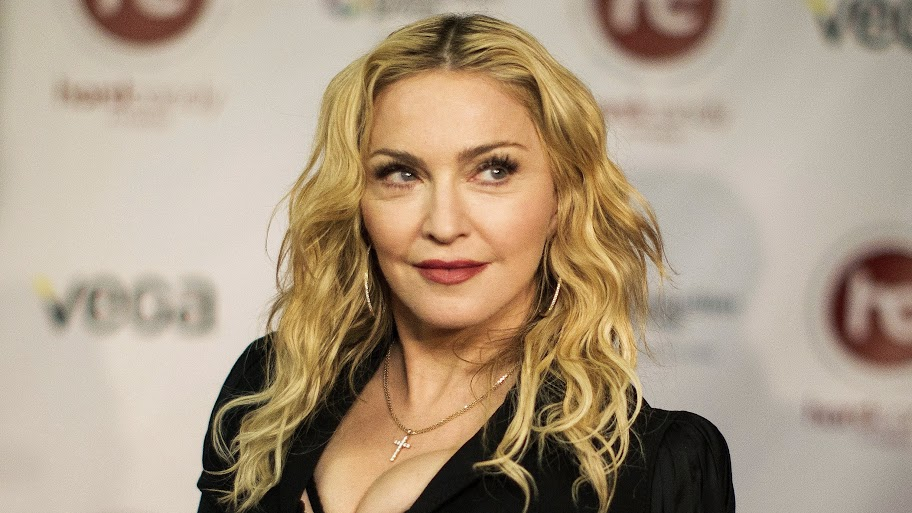 Democrat slams Madonna for criticizing Michigan
