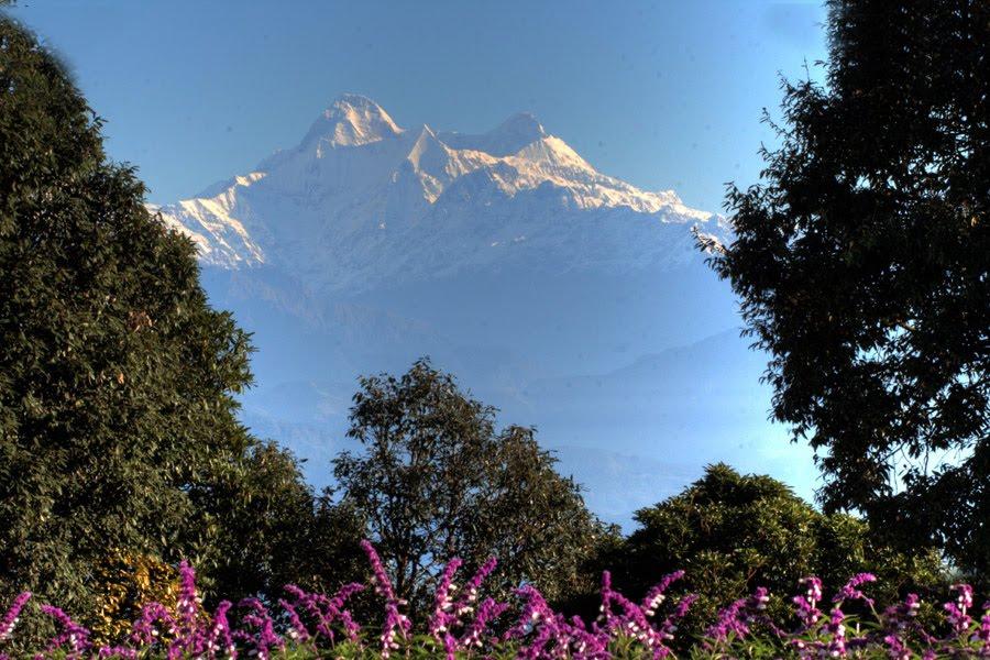 Tourism of Uttaranchal | Uttaranchal: Ranikhet | Ranikhet Hill ...
