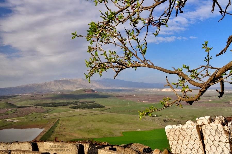 Вид с горы Бенталь на Долину Слез. Экскурсия в Голаны. Гид Светлана Фиалкова.