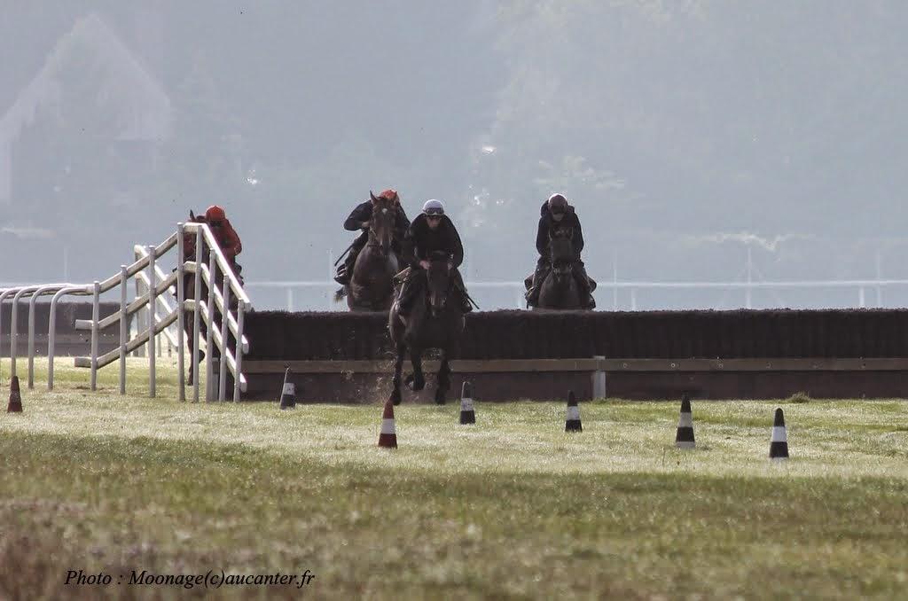 Photos Lamorlaye entrainement obstacle 14-08-2014 IMG_2857