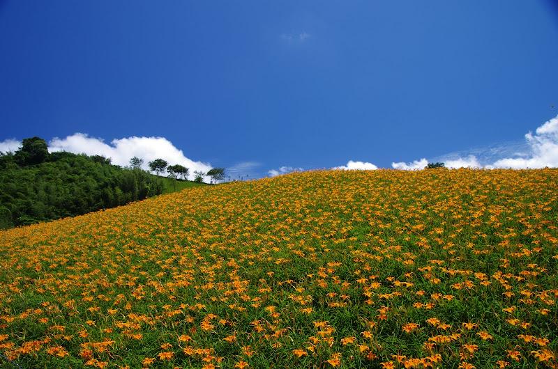 2011.08.16 花蓮六十石山 好....熱的天氣