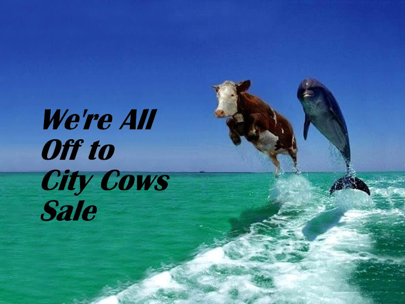 City Cows Christmas Sale