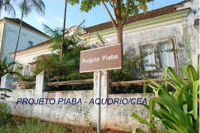 Projeto Piaba