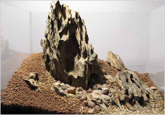 Các loại đá thủy sinh có thể dùng cho bố cục Avatar