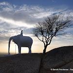 """Photographies de Retour des Indes: Galerie """"Le temple Jain de Ranakpur (et ses environs)"""""""