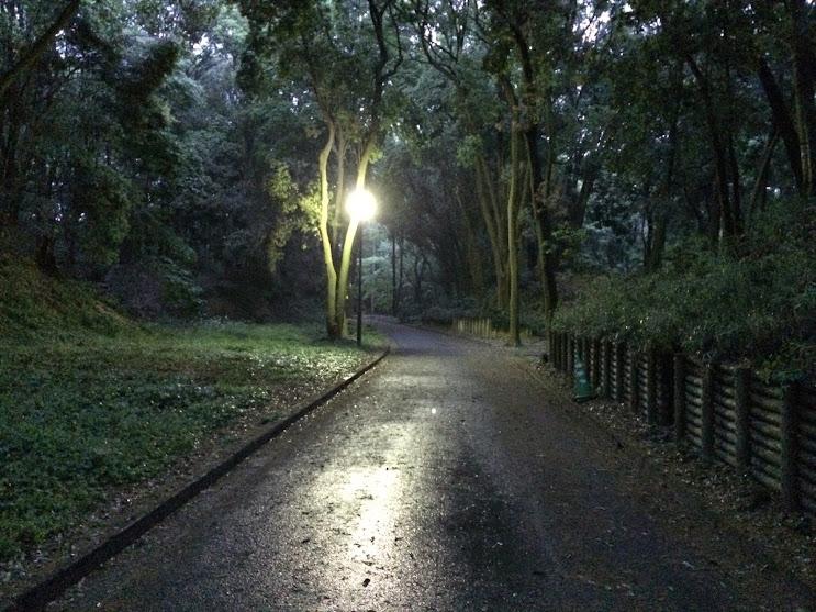 追悼碑に向かう園内の小径