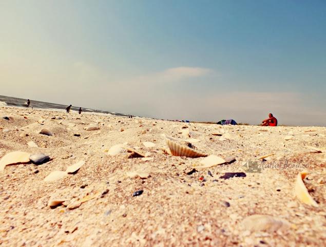 plaja vadu august 2013