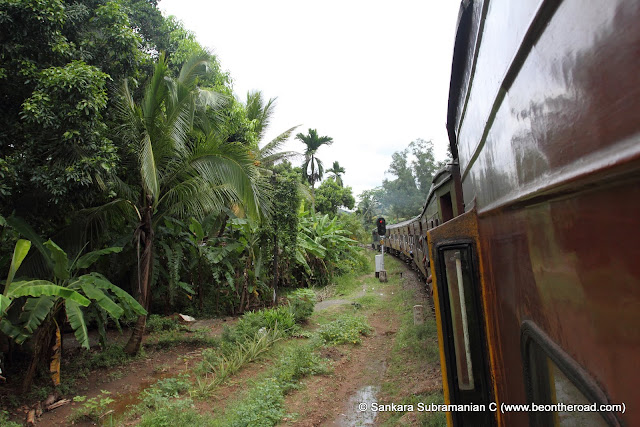 The train passes through lush green plantations and forests all along