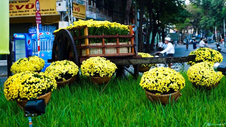 Tìm khung hình Tết đẹp cho anh em nhiếp ảnh gia Sài Gòn - 62954