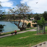 Green Point Park looking down to Camp Cove (256058)