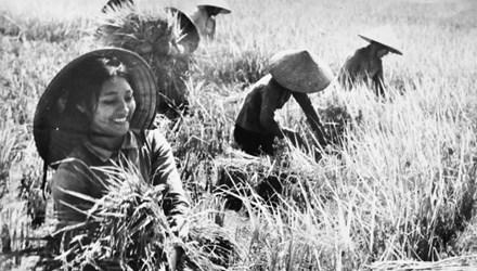 Thơ ca ngợi người Phụ nữ Việt Nam
