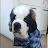zesttowner avatar image