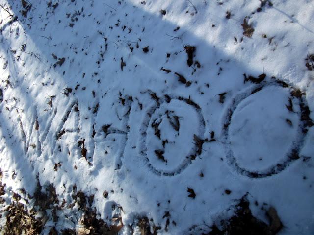Wahoo on the Berryman Trail