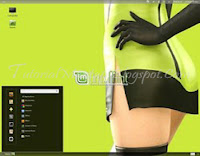 Instal Linux Mint 12 Via Flashdisk