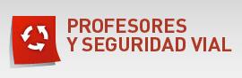 Profesores y Seguridad Vial